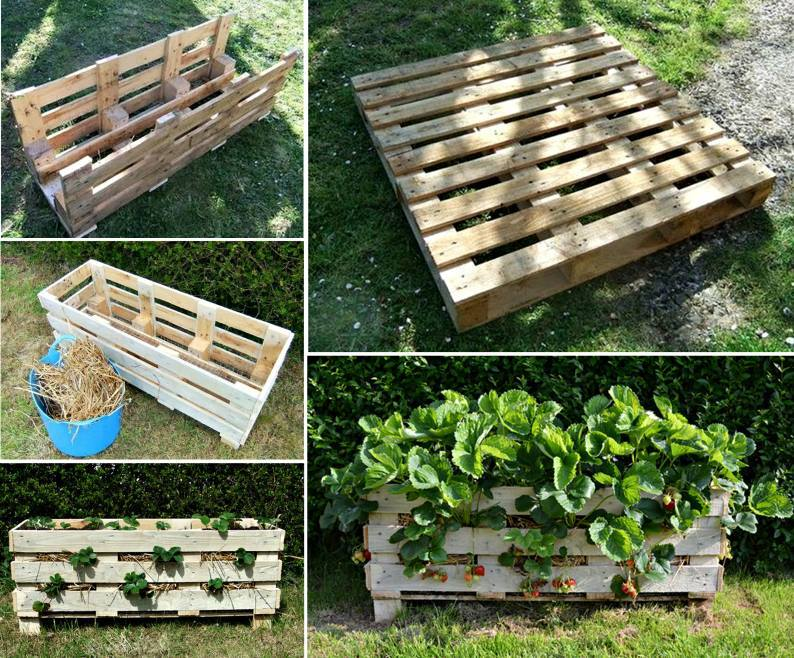 "Smartcity on twitter: ""#riciclo #pallet   orto verticale per ..."