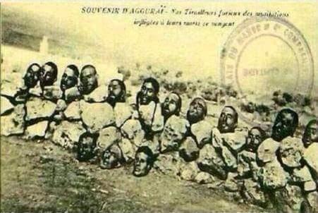 Fransa'nın Cezayir katliamından geriye kalan 'kafatasları' - DÜNYA