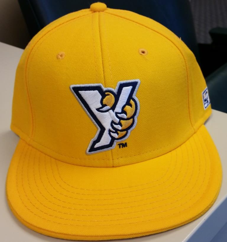 Want this #YorkRevs fitted for FREE in YOUR size? Then re-tweet this & FOLLOW @WOYK1350. 1 winner selected at random! http://t.co/UD7FVcnj0W