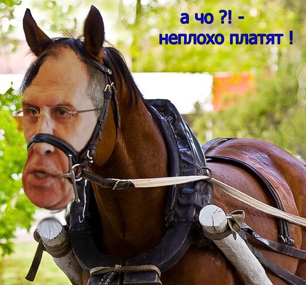 """Минфин Чехии заморозил прибыль конюшни Кадырова: глава Чечни заявил о """"грубейшем нарушении прав лошадей"""" - Цензор.НЕТ 6187"""