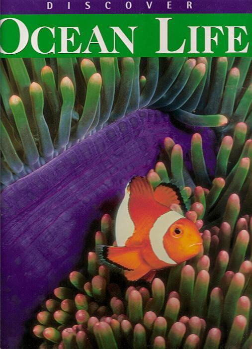 Discover Ocean Life by Alice Jablonsky Hb 2008 #Children #Science http://www.cindybearsden.com/store.php?seller=CindyBearsDen&pd=7553063…pic.twitter.com/wUjfn9MwbC