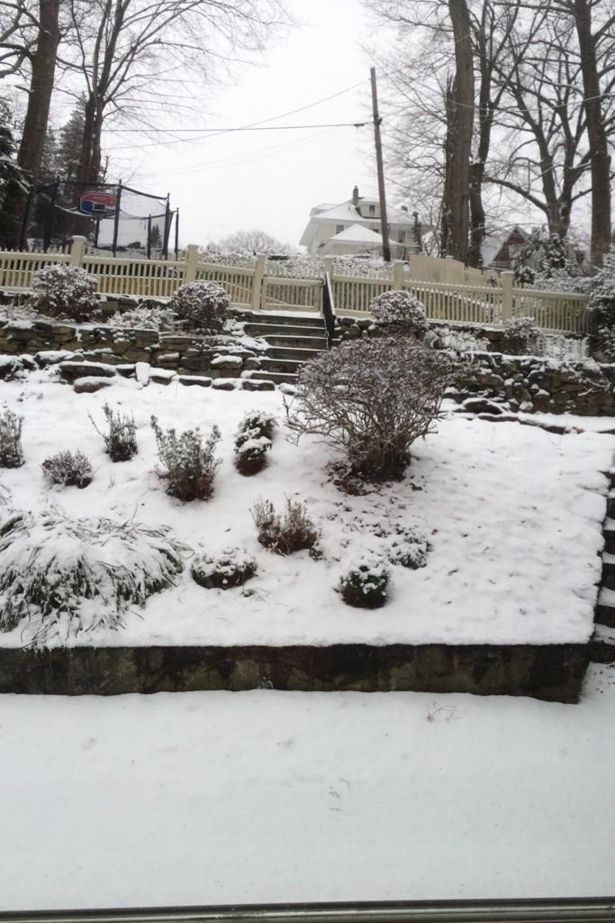 View from kitchen door to backyard in winter. #WalkMyWorld One virtual world, http://t.co/MgKf8LJmTV http://t.co/v8LJtpEDmy