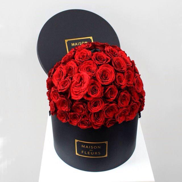 maison des fleurs pls. http://t.co/Lln8OSfoiu