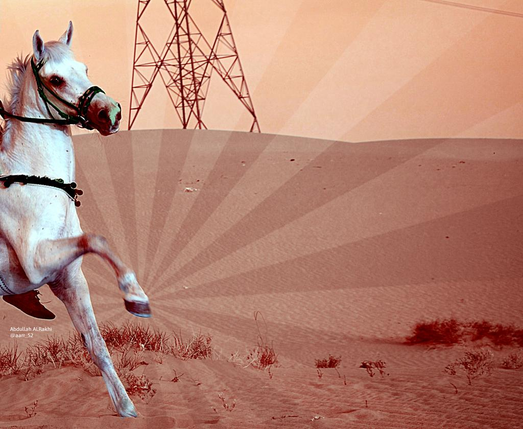 صوور منوعه ، من #مربط_العليا ! #عبدالله_الرخي ♡ #الجوف #تصويري #خيول #فرسان_الجوف #السعوديه .. http://t.co/cKoawz8zcF