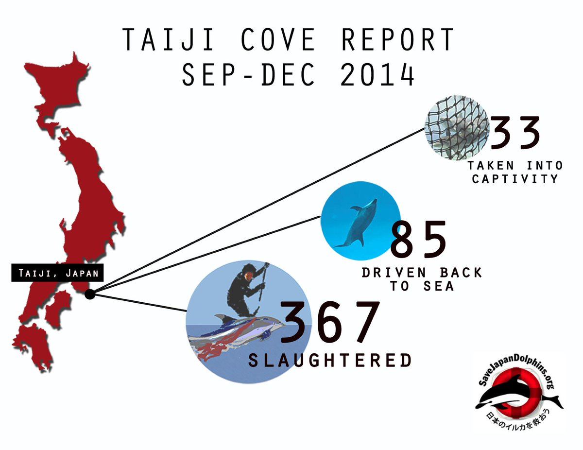What have we learned from the 2014 hunting season in #Taiji? #CoveReport #SaveJapanDolphins http://t.co/upydAUcymU http://t.co/STrAuuEhFF