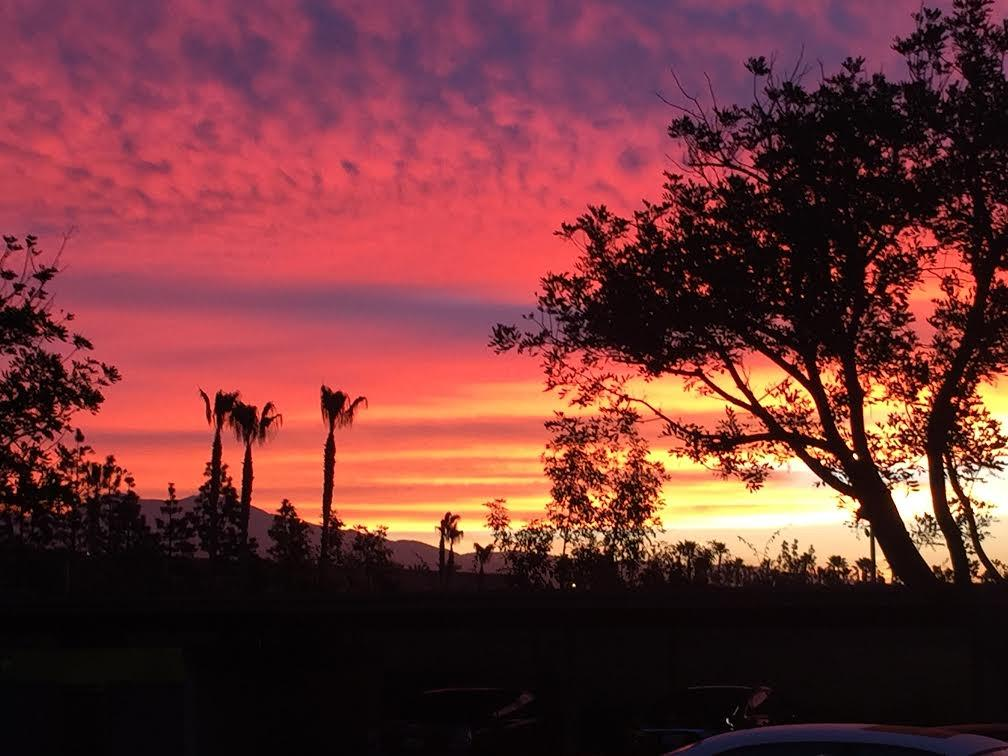 Off 2 work bright & early gotta beat the traffic +catch that perfect CA sunrise! Doesn't it look like Jurassic Park?! http://t.co/1Fpu78eoUn