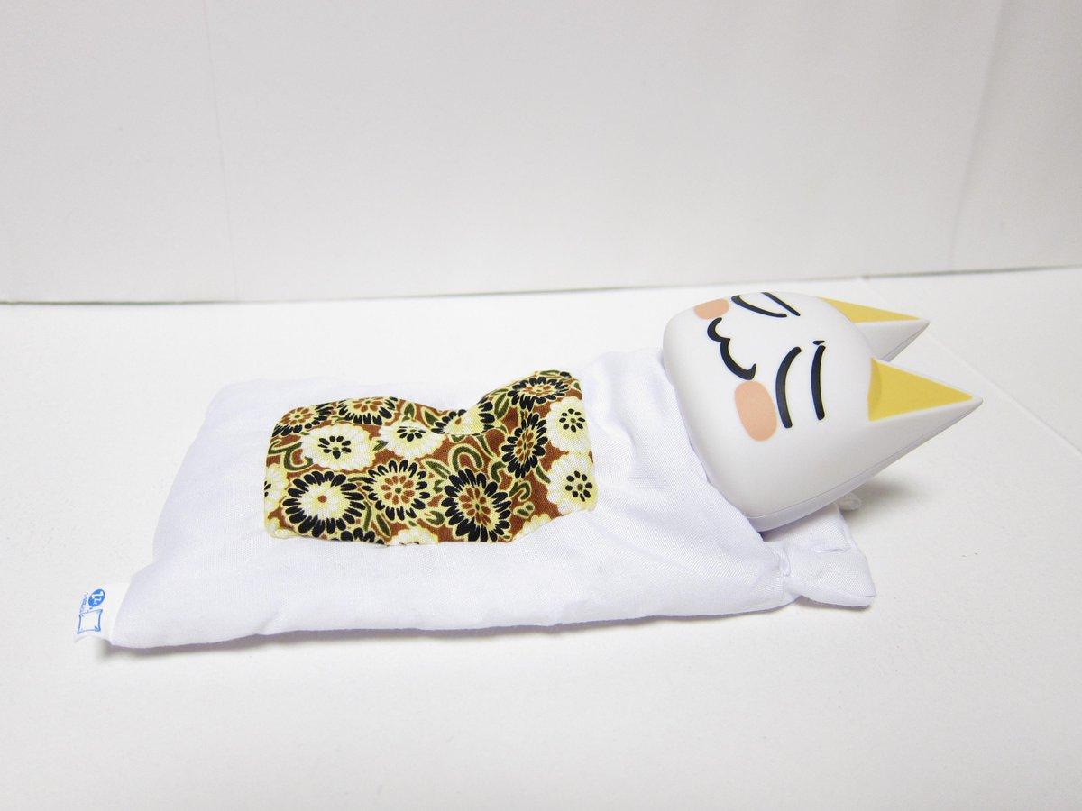 布団で寝ているトロです。可愛いですね。