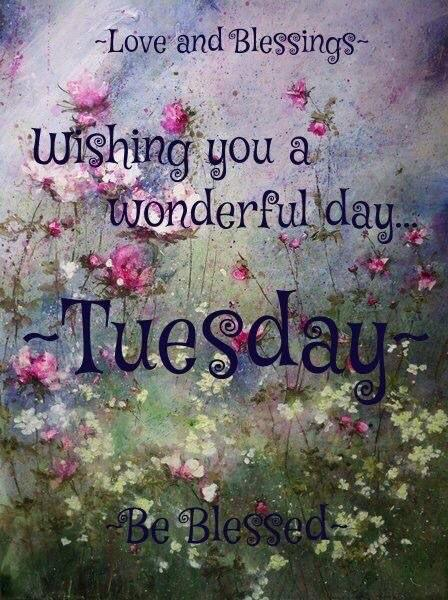 Image result for have a beautiful tuesday