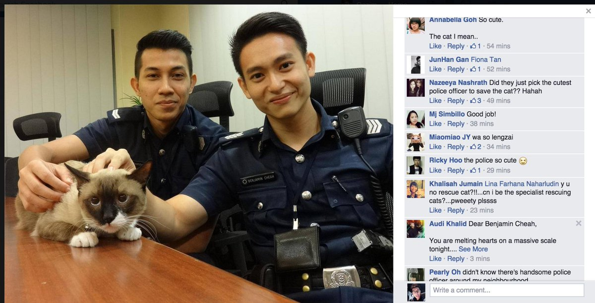 The cat-saving policeman has become an online celebrity it seems - so many fans! http://t.co/2yCIMaHMFk
