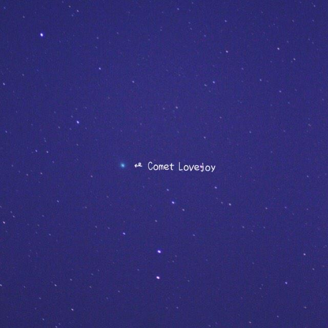 ラブジョイ彗星 撮れた #ウチソラ #CometLovejoy #comet http://t.co/sAiM68plVg