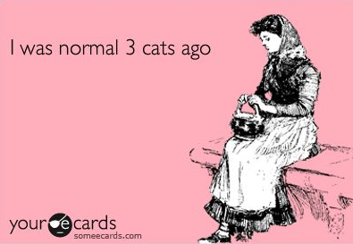 fee542860 Crazy Cat Lady on Twitter: