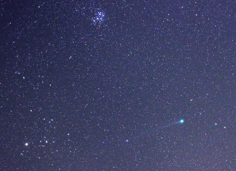 Here is Comet Lovejoy tonight, passing star clusters the Hyades and Pleiades in Taurus. A nice tail is showing. http://t.co/Xp0kHEfOwf
