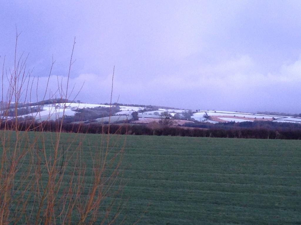 """Frosty Quantocks *snigger* x RT @bbcsomerset #snow's mainly on Somerset's higher ground. This is the Quantocks. http://t.co/cH5e2XFOh9"""""""