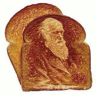 @jesusintoast Tweeted: If evolution isn't true, explain why this came out of my toaster today. #darwin #profilesintoast