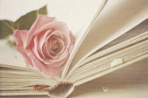 Романтические книги скачать бесплатно
