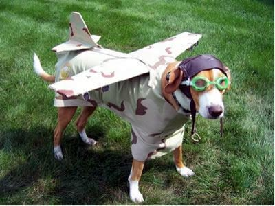 First picture of The lost beagle on Mars...... #r4today #beagle2 http://t.co/83lQrZXdWH