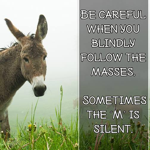 Yasmeen Ali On Twitter Be Careful When You Blindly Follow The