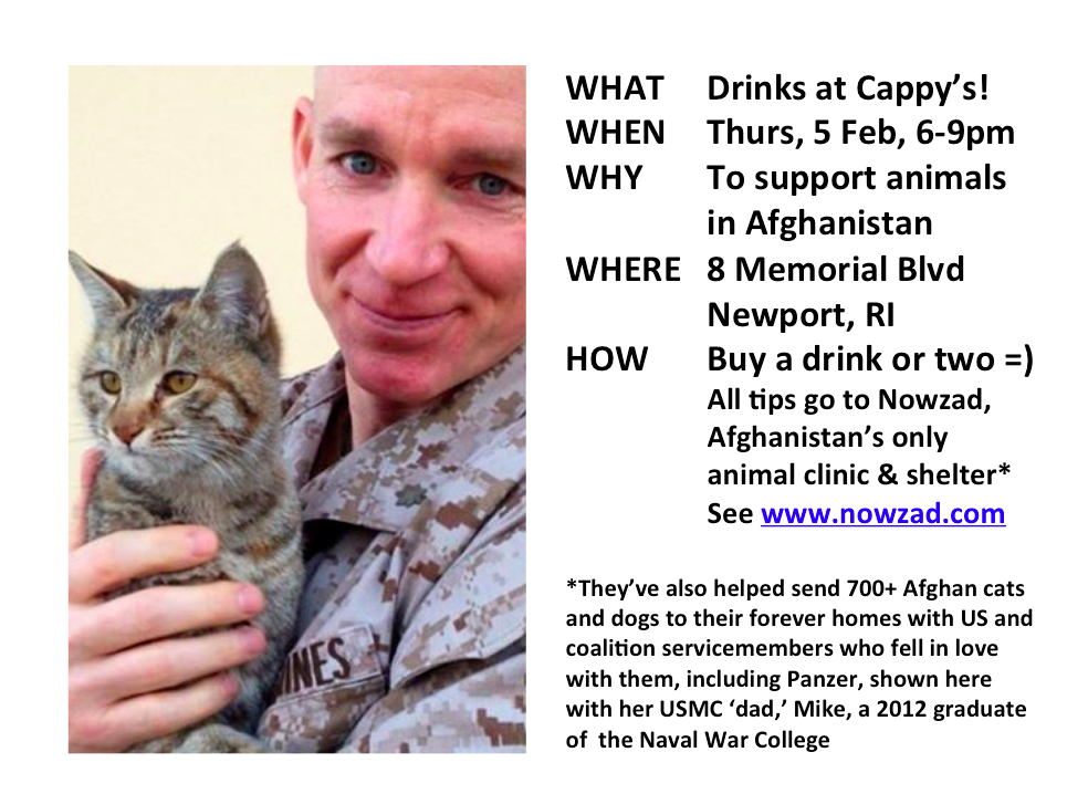 Newport And Aquidneck Island Im Bartending At Cappys Feb 5 6 9 Pm All Tips Go To NOWZAD Animal Rescue In Afghanpictwitter KDjNZHSMdS