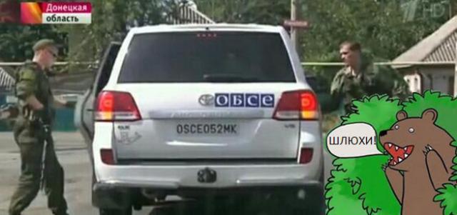 Наблюдатели ОБСЕ не смогли доехать в аэропорт Донецка, - пресс-секретарь миссии - Цензор.НЕТ 8532