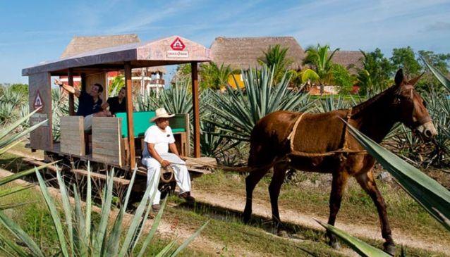 Sotuta de Peón Merida Yucatan Messico