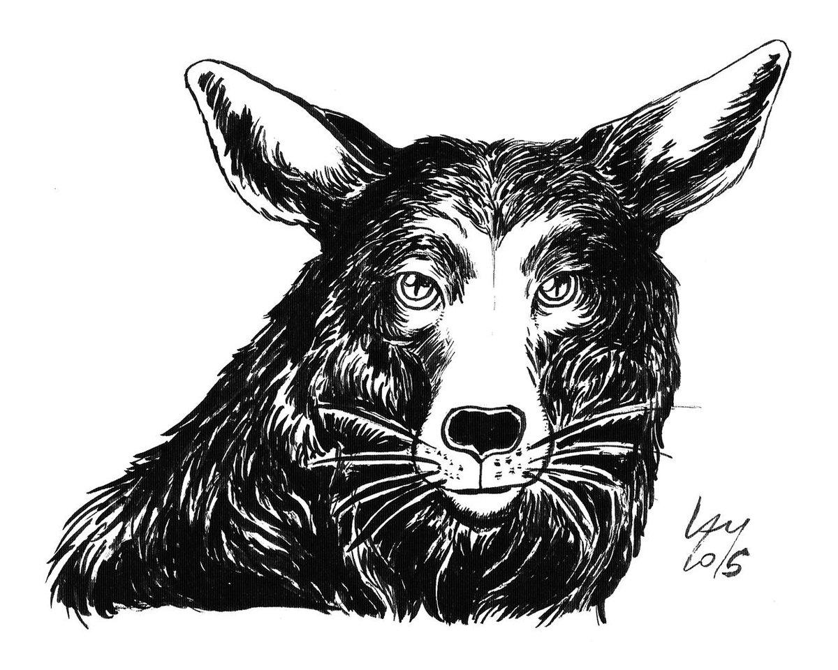 Arte de Rafael Lam - Ilustras! - Página 16 B7evcX3CIAANztx