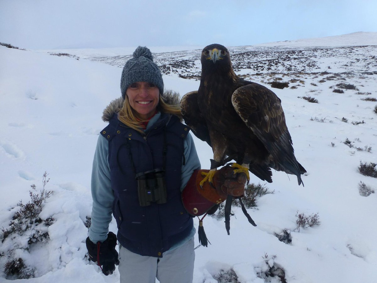 It's the only way to keep warm on @BBCWinterwatch. Cuddle up to a golden eagle! http://t.co/OIvWTU2NyG