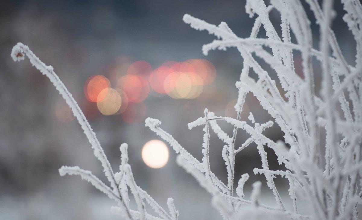 alaska nps on quintessential quote frozen snow adorns