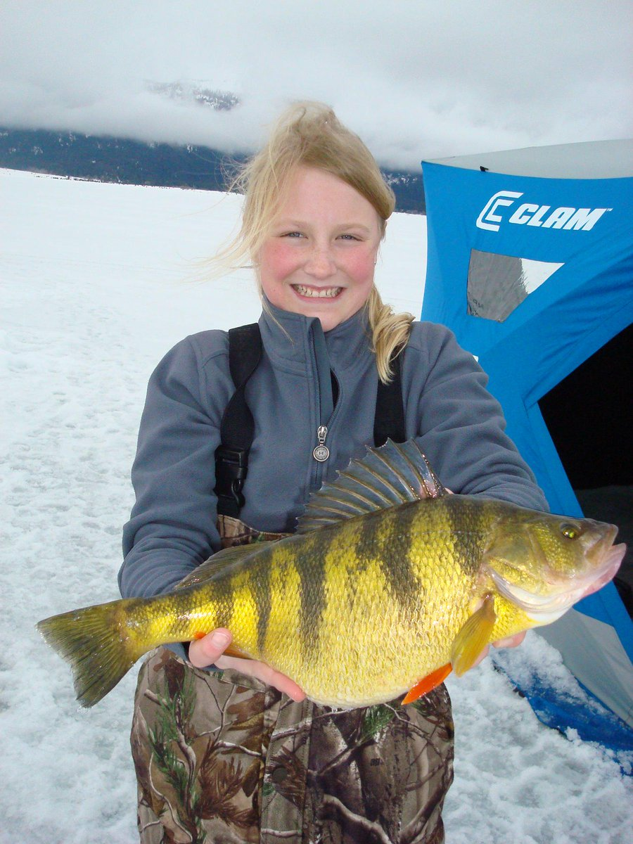 12 year old Eagle Idaho girl sets world record for yellow perch! http://t.co/jLFHuqyyK1 http://t.co/IfrUg2Rg2T