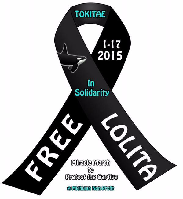 Please show solidarity and change your image for #LOLITA ! #Blackfish #MiracleMarch4Lolita #tweet4taiji #SeaWorld http://t.co/zglMSJgfT0