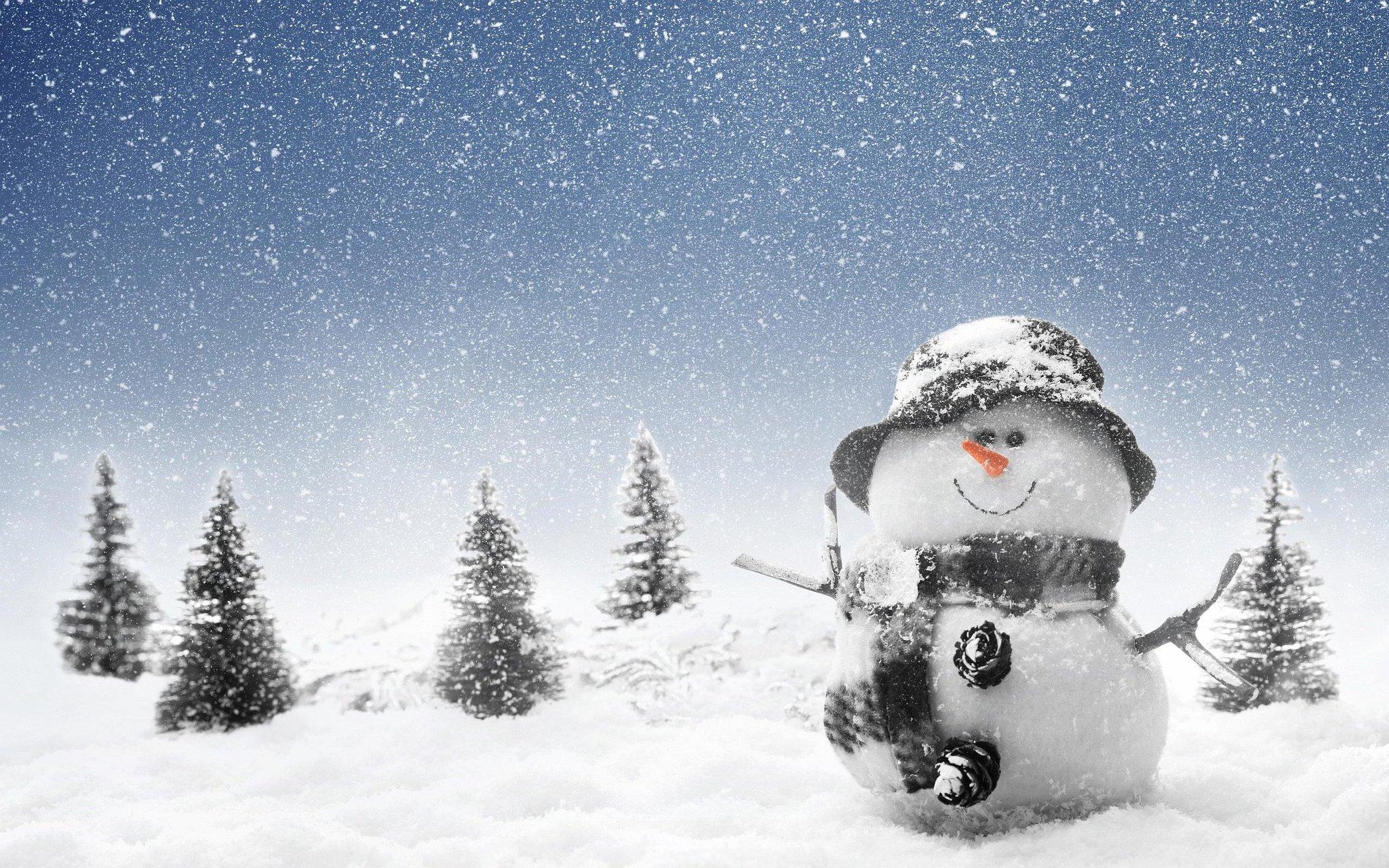 Открытки на день снега, черно