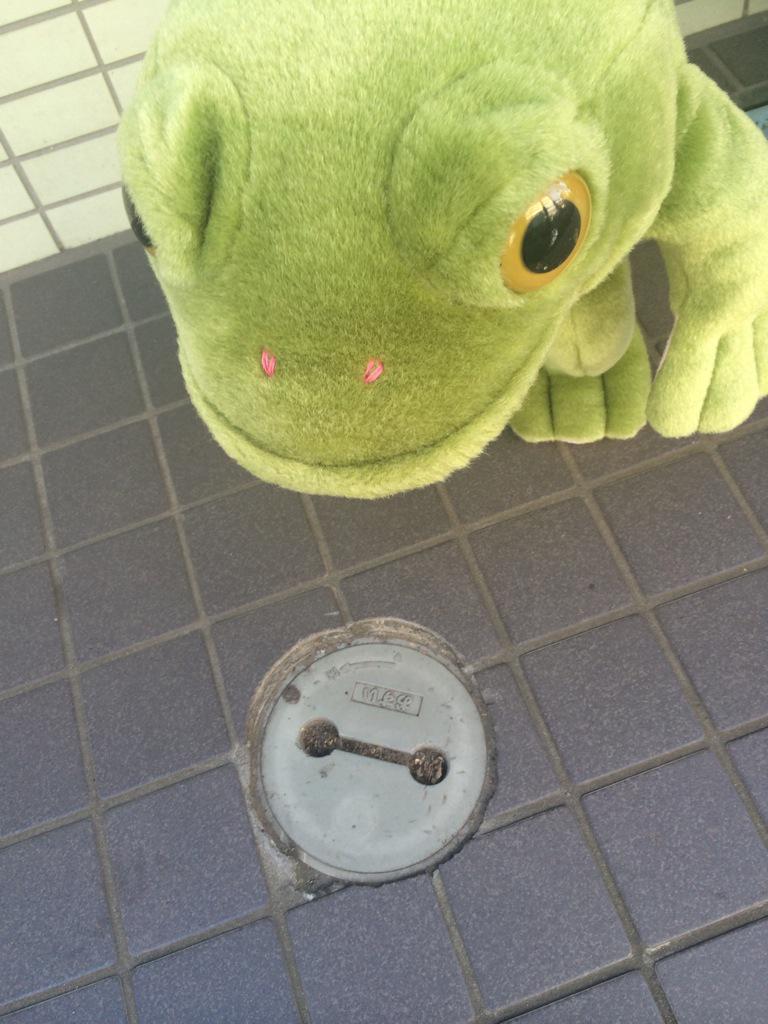 『こんにちは。わたしはベイマックス。あなたのこころと下水を守ります。』 pic.twitter.com/0QGHySqA1V