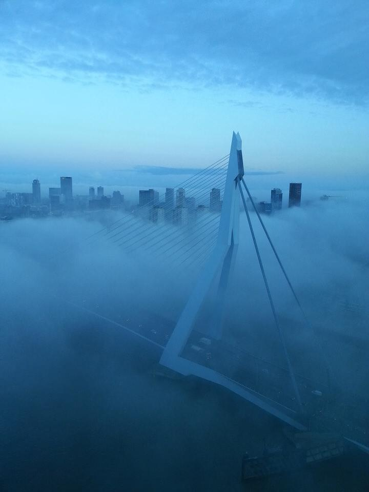 Dit is niet San Francisco, maar ons eigen #Rotterdam. Tof hè! Foto is gemaakt door Alex Langerak. #mist #Erasmusbrug http://t.co/MBynLH0L4n