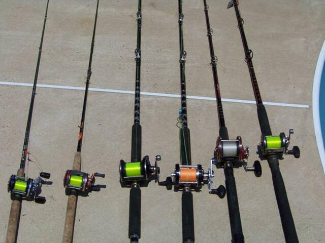 Salt slayer 17 on twitter my shark fishing gear shark for Shark fishing gear