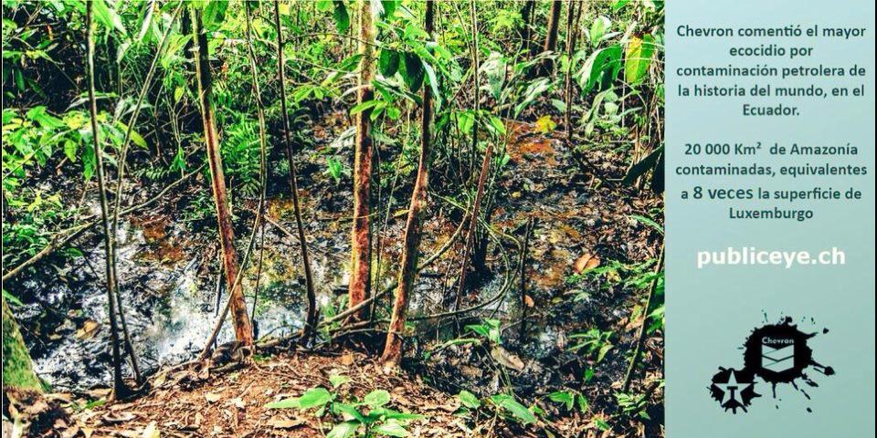 An vielen Stellen des Amazonas-Gebietes in Ecuador tritt abgepumptes Rohöl wieder an die Oberfläche