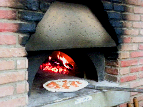 Convection wall ovens reviews