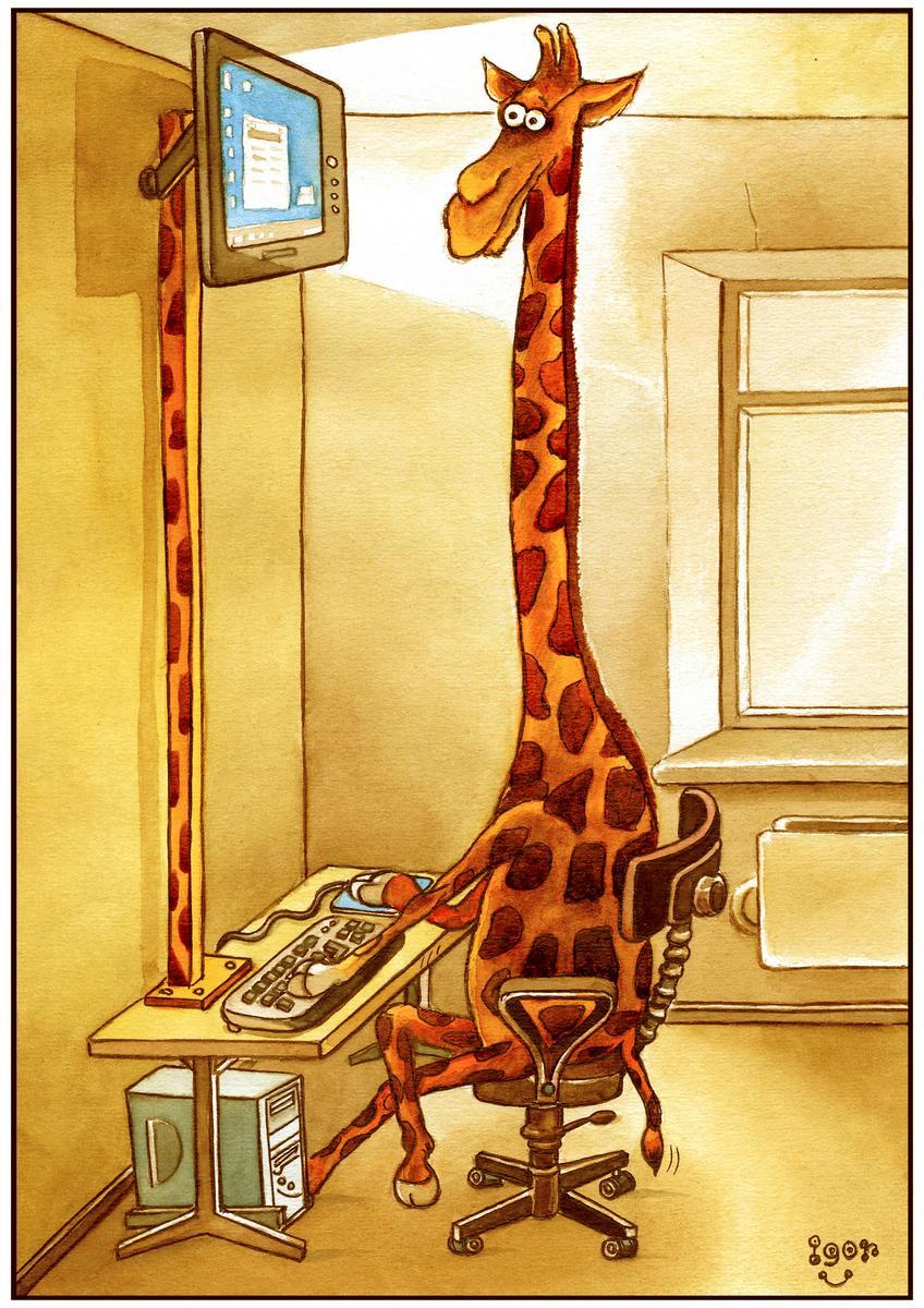 Рисунки прикольных жирафа, днем рождения для