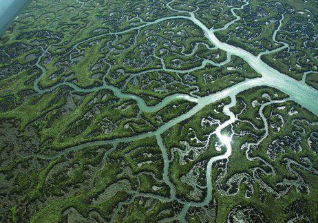 Hoy, Día Mundial de los #Humedales no podemos olvidar que España es el 3er país con más humedales del mundo  #Doñana http://t.co/CESzAzRJSu
