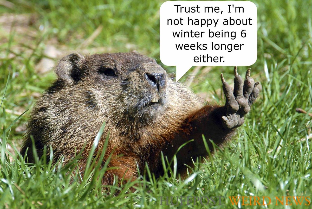 Happy Groundhog Day: Happy Groundhog Day! Punxsutawney