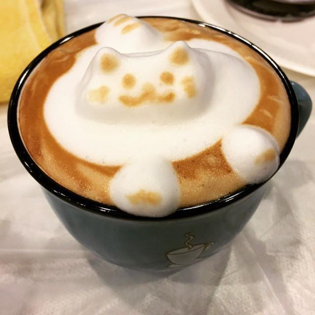 Heart Beating After Drinking Coffee