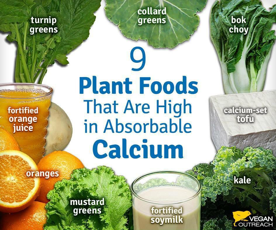 Drink milk for calcium they say. I have other ideas @MKGfitness @bigtymer32 @VeganTweeter @vbbook @VeganCoaching http://t.co/VjnnLC3ZdQ