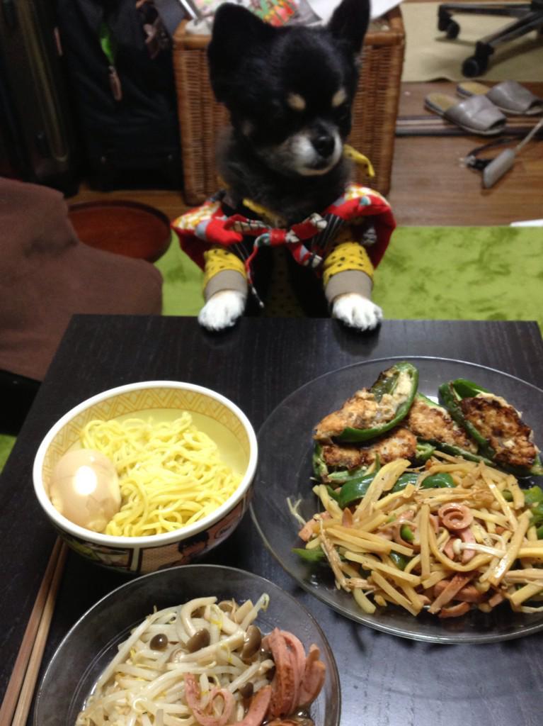そして、わし用のご飯も作っててくれた。ピーマンの肉詰め、青椒肉絲、モヤシとキノコのポン酢和え、味付き半熟玉子も!好物ばっか!あの人、むっちゃええ人や!