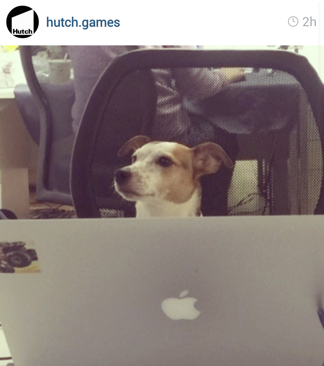 Hutch On Twitter Hutch Now On Instagram Follow Hutch Games To Get