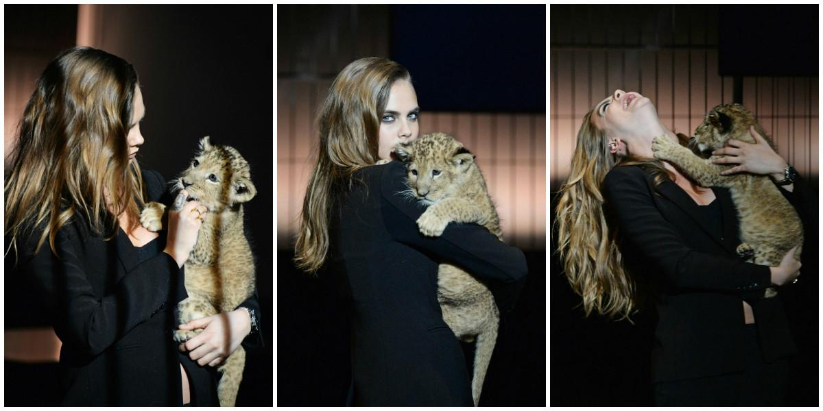 .@Caradelevingne plays with an ACTUAL LION at @TAGHeuer #DontCrackUnderPressure announcement: http://t.co/AuiRxrecKJ http://t.co/Pgzsa2R09j