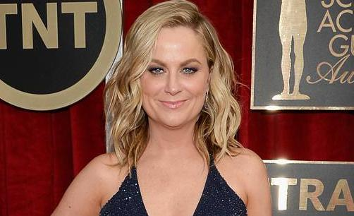 #AmyPoehler is a sparkling gem on the red carpet at the #SAGAwards! http://t.co/DifKHEQdfl http://t.co/gMcvQkbHyR