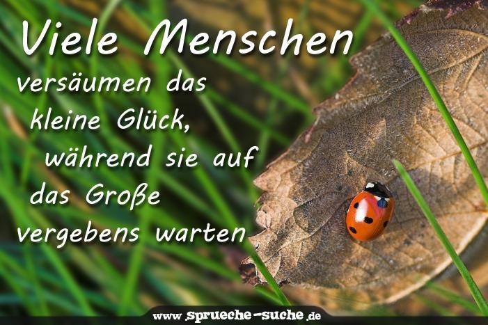 Sprüche Suche on Twitter: