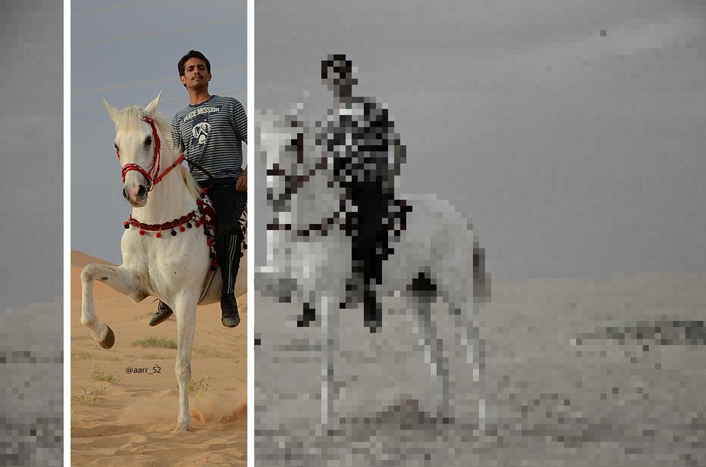 """الخيال خيي عبدالرحمن ! علی الفرس وهايب من #مربط_العليا ... . . #عبدالله_الرخي #صور  #فرسان_الجوف #خيول #السعوديه http://t.co/77eN5Ji6wj"""""""