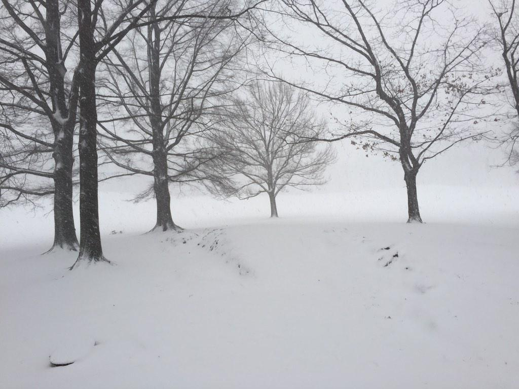 It is getting bad out there. It's the first time I've ever been lost in the park. @CentralParkNYC #whiteout http://t.co/fC3nUV3zYq