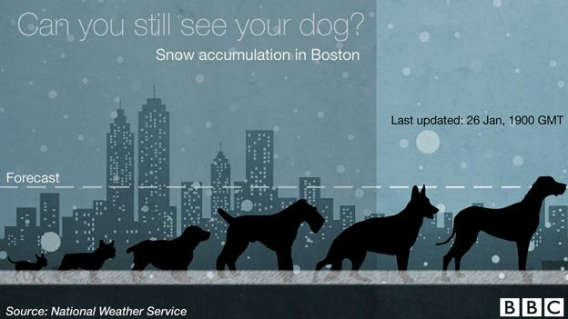 Thumbnail for Boston, snow, and dogs