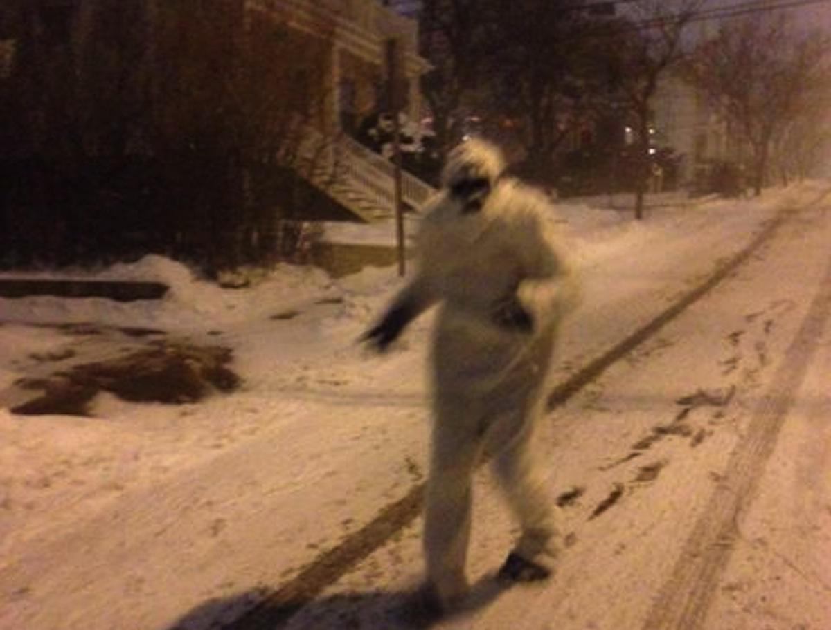 There's a Yeti on the loose: @BostonYeti2015 http://t.co/MaF369QwJ1 http://t.co/hA5qISjdhL