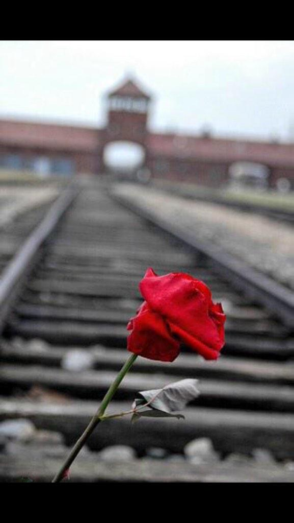 Today we remember you. Never forget. Never again. #HolocaustMemorialDay http://t.co/8P5yc0BAJz